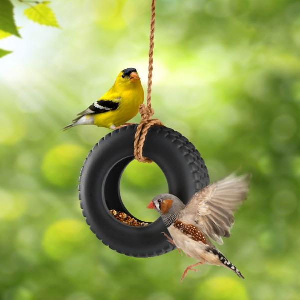 Invotis - Fred - Futterring Vogelhaus Reifen - Swing Time