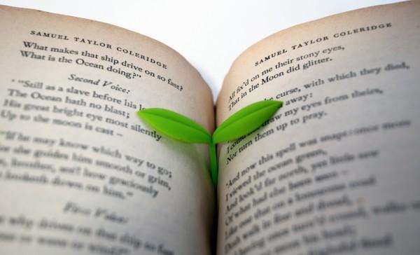 Suck.Uk - Lesezeichen Pflanze Blume - Sprout Bookmark 3er-Set