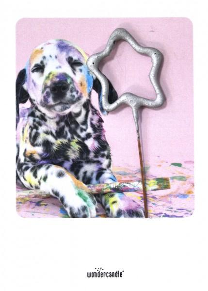 Wondercandle - Mini-Grußkarte mit Wunderkerze - Bunter Hund